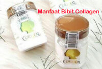 Manfaat Bibit Collagen