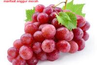 manfaat angur merah