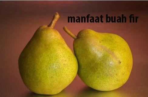 manfaat buah fir