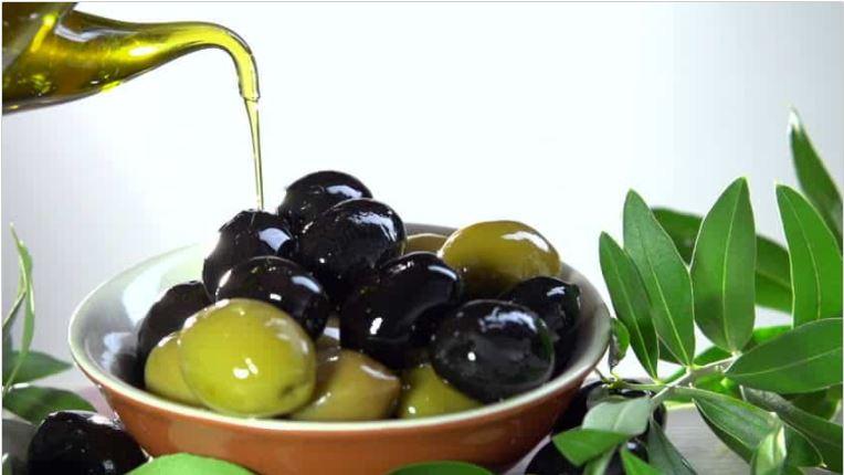 manfaat buah zaitun