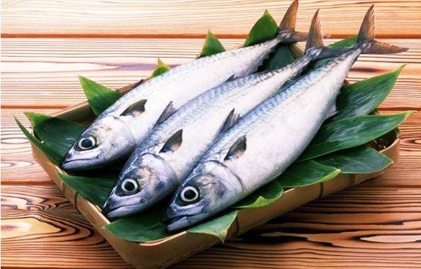 cara memilih ikan tongkol