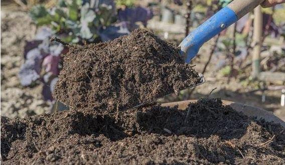 cara membuat pupuk kompos